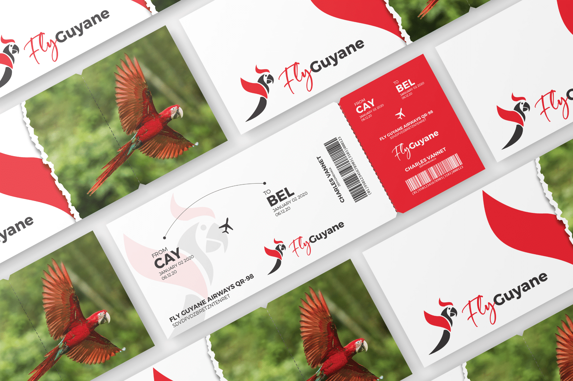Cartes de visite Fly Guyane